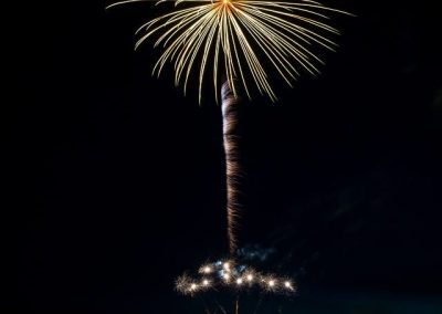 fireworks 2014 POSTCARD